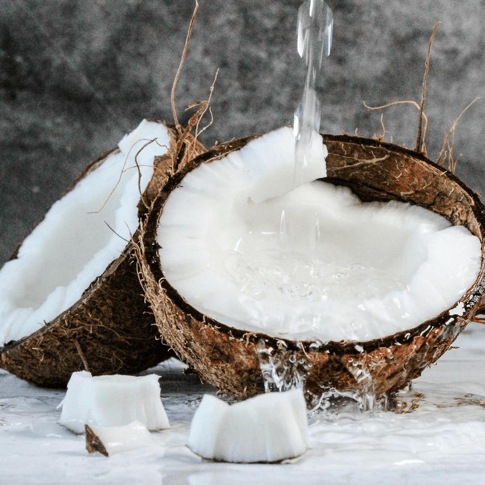 Coconuts 1